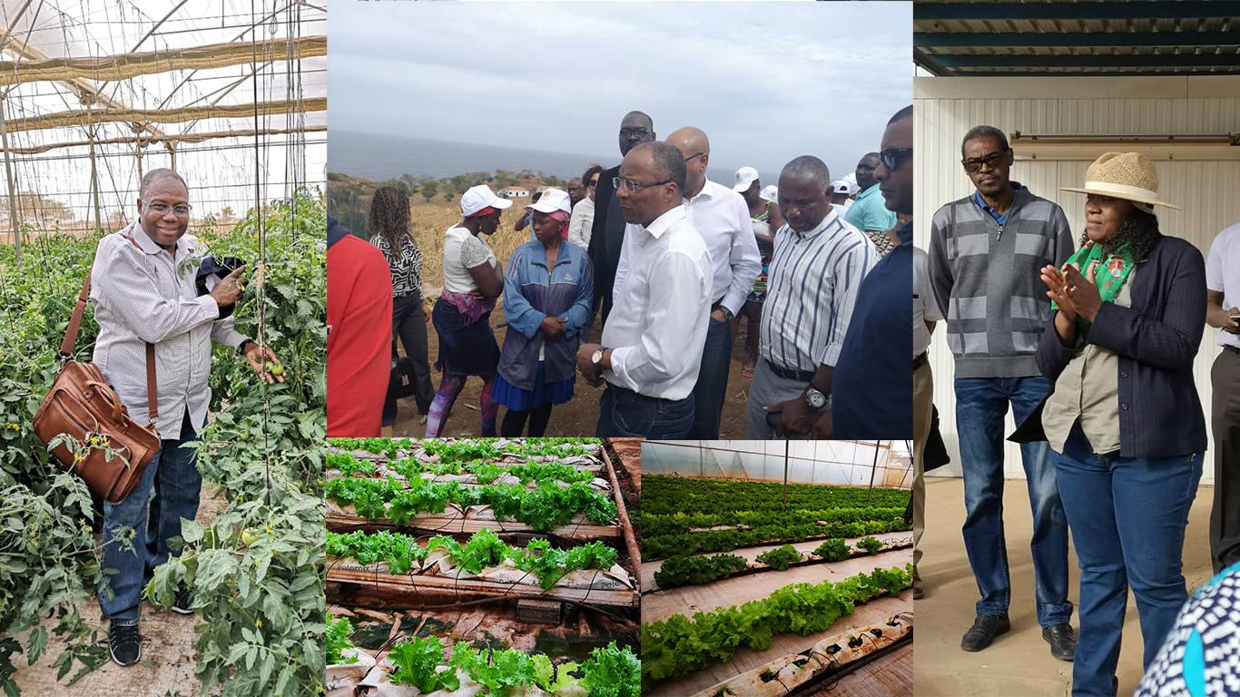 Le Commissaire chargé de l'agriculture, de l'environnement et des ressources en eau à la CEDEAO s'engage à appuyer le programme ARIFA