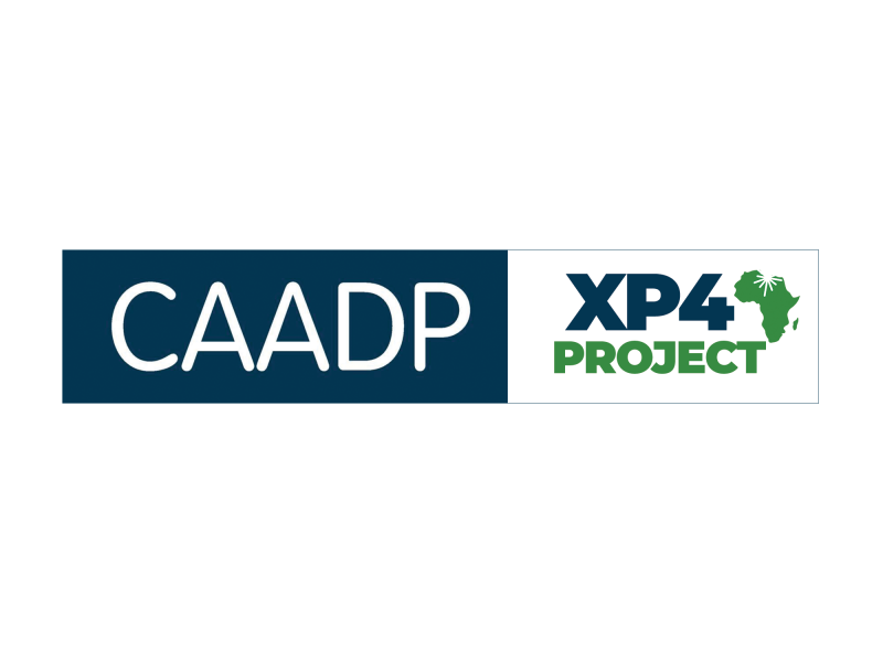 The CAADP XP4 Programme: Rallying Africa Ag Research Institutions towards Achieving CAADP-Malabo